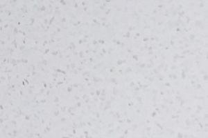 White-storm.jpg